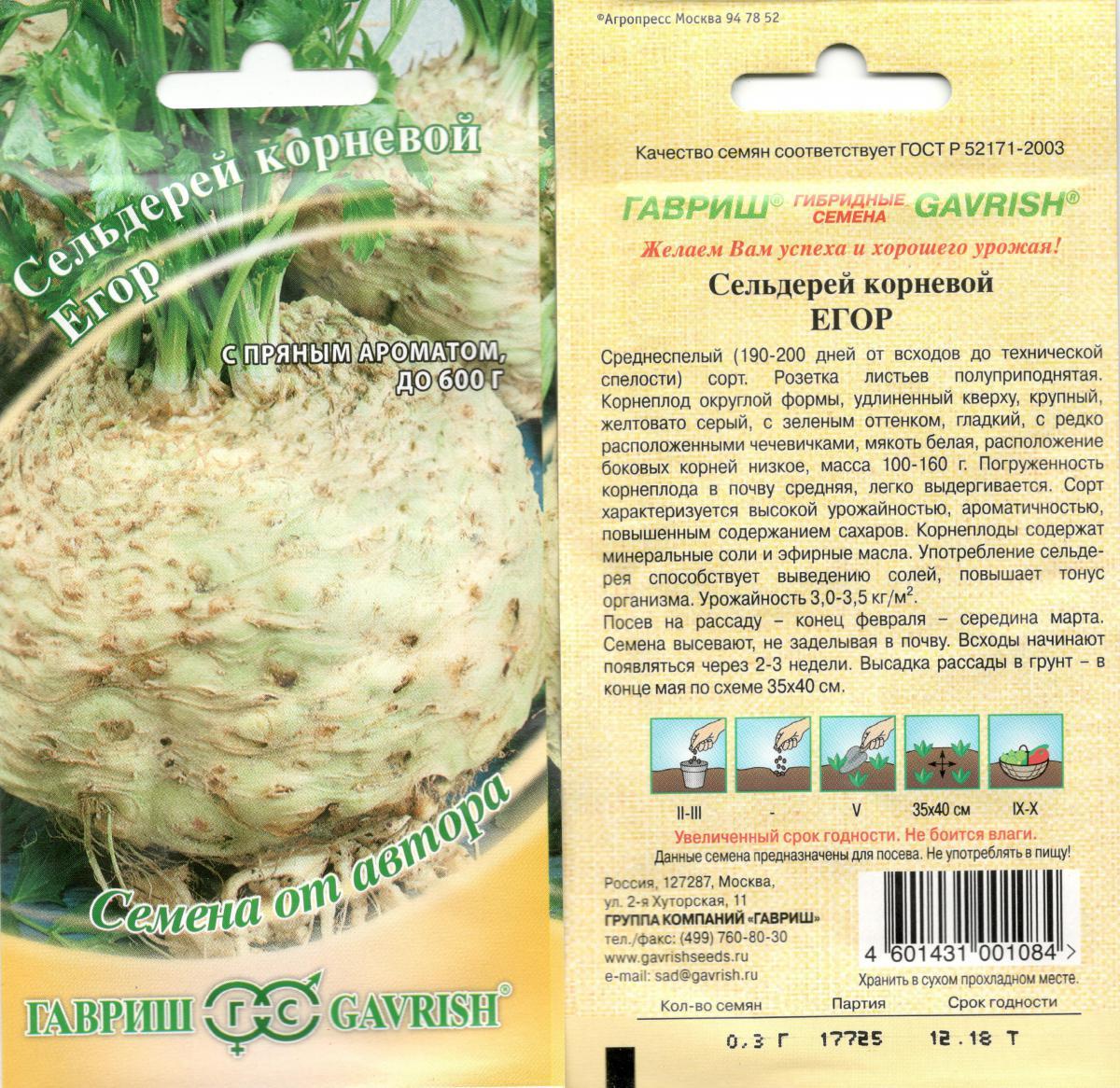 Выращивание корневого сельдерея - не упустите важные