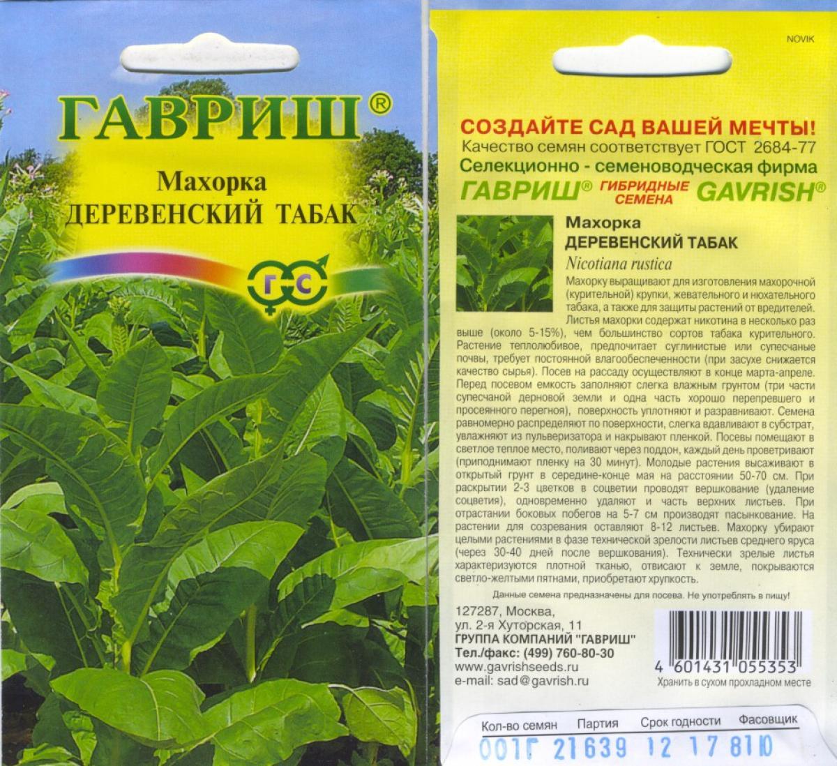 Сорта махорки для выращивания в сибири 53