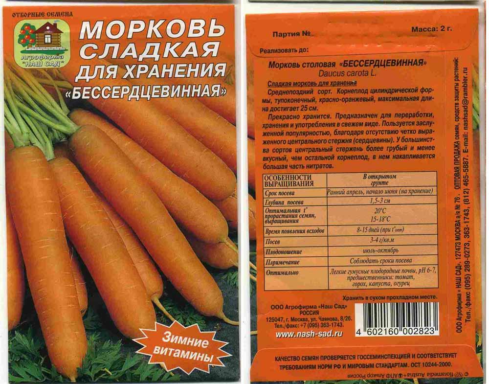 Когда сажать морковь сорт 885